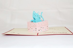 3D Cats in Box, Greeting Card, GAS_0048